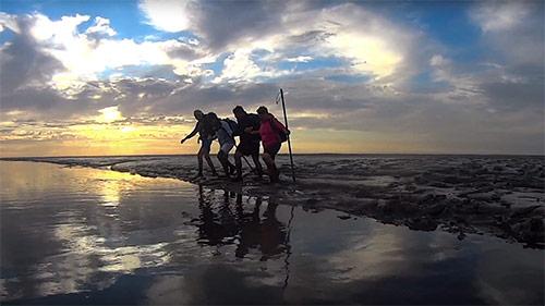 Wadlopen bij ondergaande zon